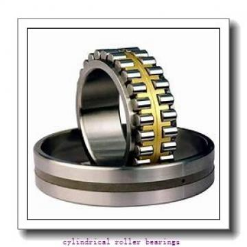 2.565 Inch | 65.146 Millimeter x 4.331 Inch | 110 Millimeter x 1.063 Inch | 27 Millimeter  LINK BELT M1310EB  Cylindrical Roller Bearings