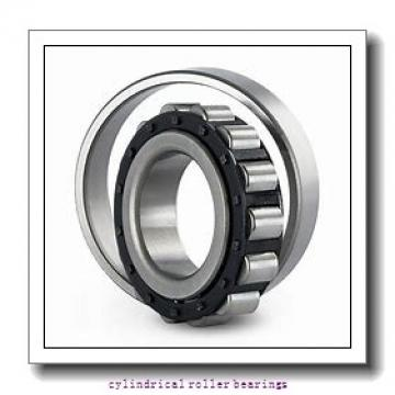 3.15 Inch | 80 Millimeter x 6.693 Inch | 170 Millimeter x 1.535 Inch | 39 Millimeter  LINK BELT MA1316EX  Cylindrical Roller Bearings